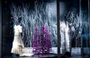 Madame Paulette Winter Window Display 2011 :